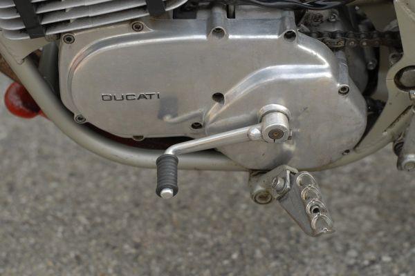 ducati-regolarita-06C87B9FCD-E684-4B72-473A-5B2FB9070053.jpg